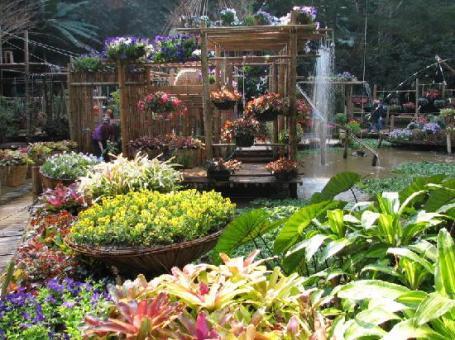 mah-fah-luang-garden-1